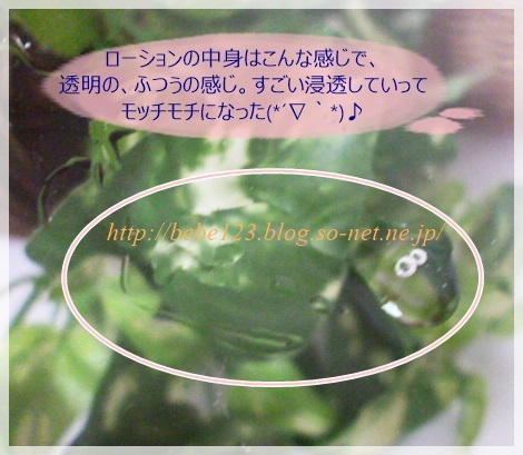 b.glen(ビーグレン) ローション.JPG